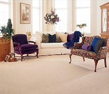 carpet and rug cleaners Sudbury