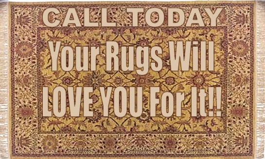 rug cleaning by Chem Dry of the North
